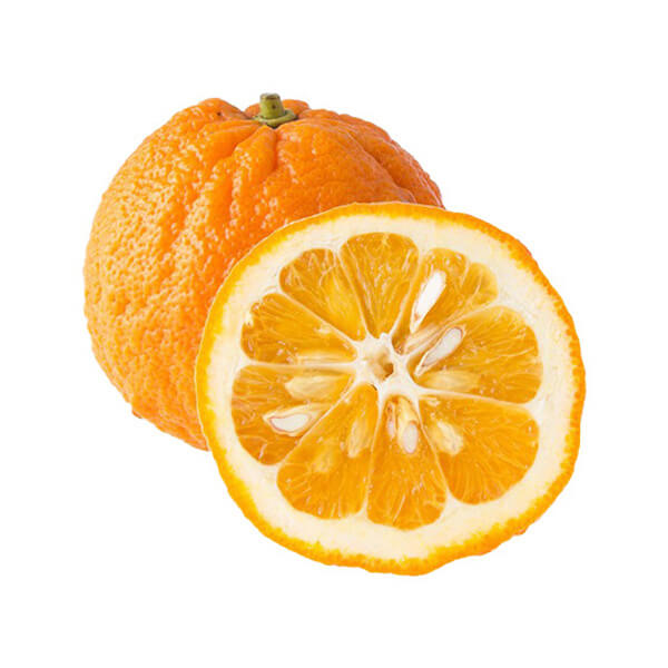 Fresh Bitter Orange