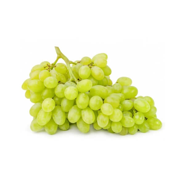 Fresh Grapes Seedless White